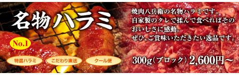 大阪ハラミ